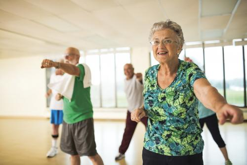 Active Older Adults Social Exercise